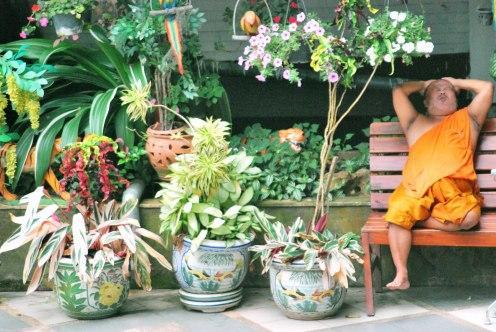 thai may-june 2011 160