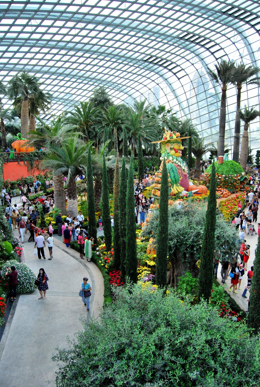 Incontri Expat Singapore