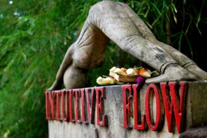 Intuitive Flow
