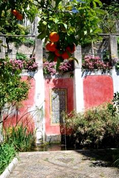 Casa Cuseni - il giardino