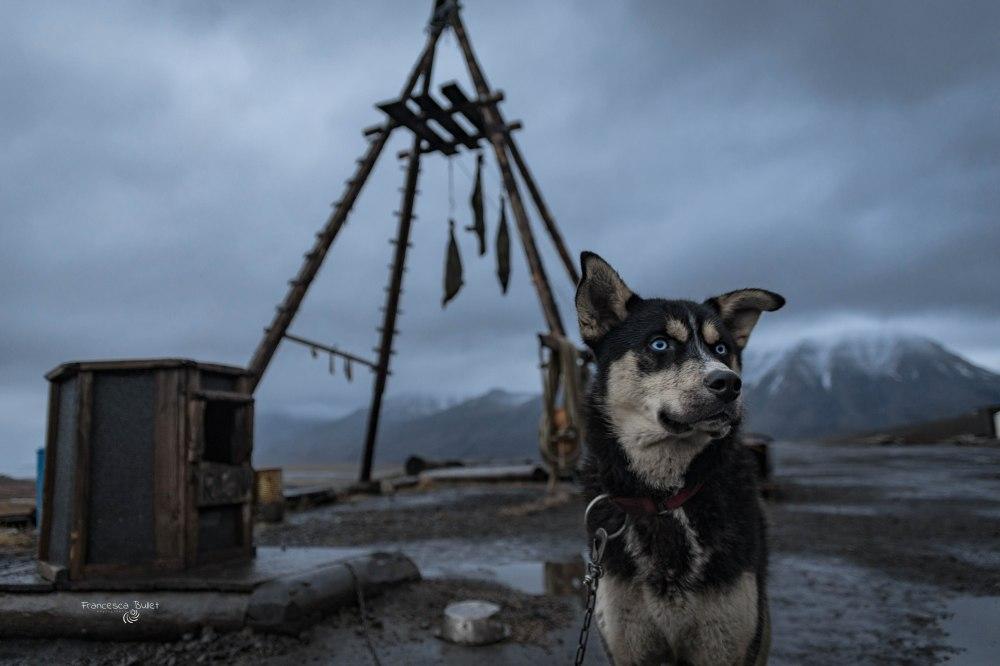 Trapper's Station. Norvegia Svalbard Island - Longyearbyen