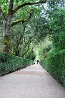 Il Grande Viale - Giardini di Marqueyssac