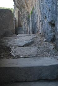 Sulla pietra viva