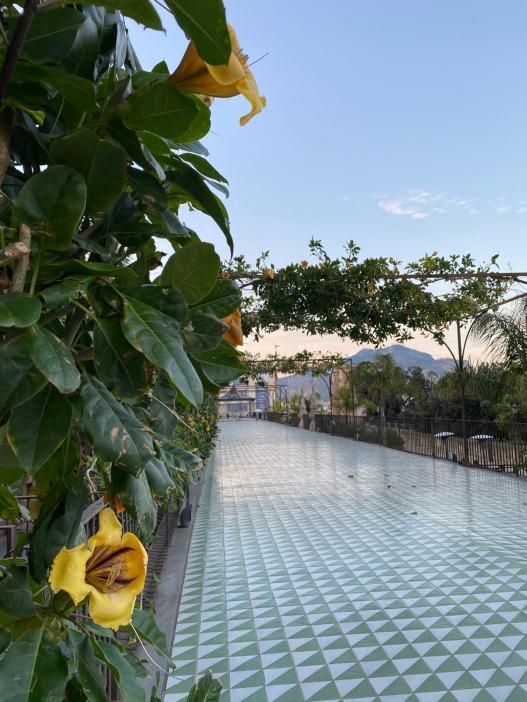 La terrazza maiolicata che profuma di solandra