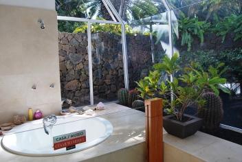 Arte Natura/Natura Arte. Una delle due sale da bagno