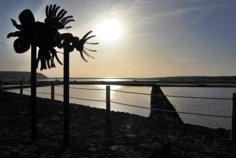Salinas de Janubio