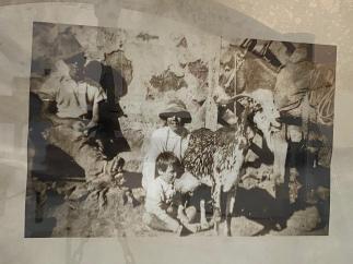 Dal Museo del Vino delle cantine El Grifo