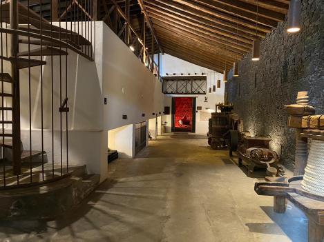 Il percorso museale alle cantine El Grifo