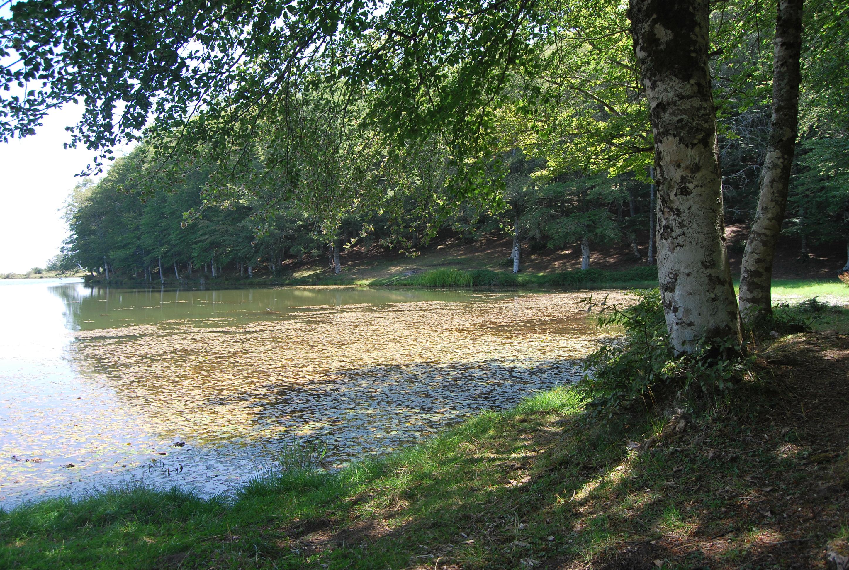 Vivere il Parco Naturale dei Nebrodi. Il Lago Maulazzo
