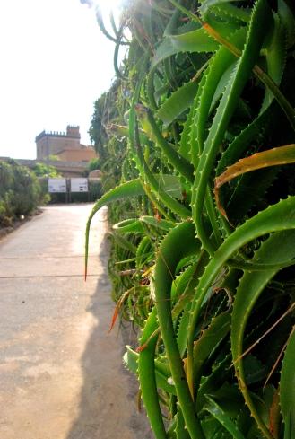 Villa Whitaker a Mozia