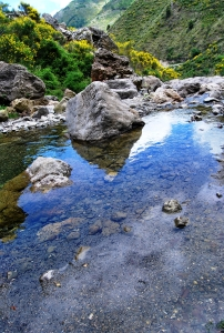 Il torrente San Basilio che scava e crea