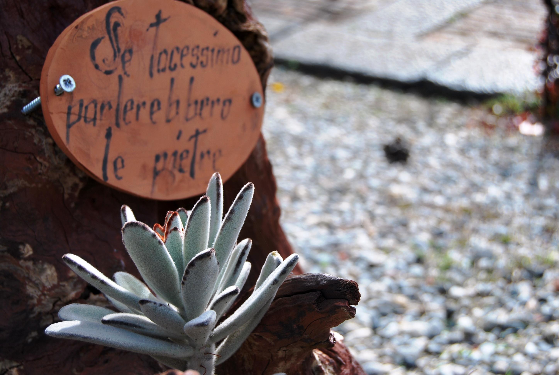 Forte San Jachiddu. Dove le pietre raccontano storia, vita, persone.