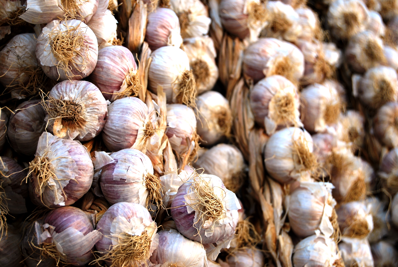 L'aglio di Nubia, presidio Slow Food. Perfetto per il pesto alla trapanese
