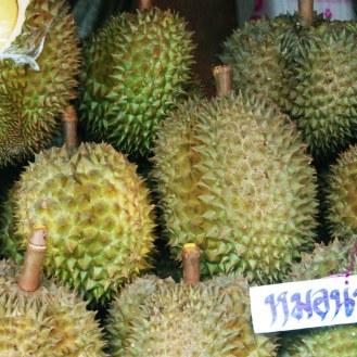 Durian. O li ami o li odi
