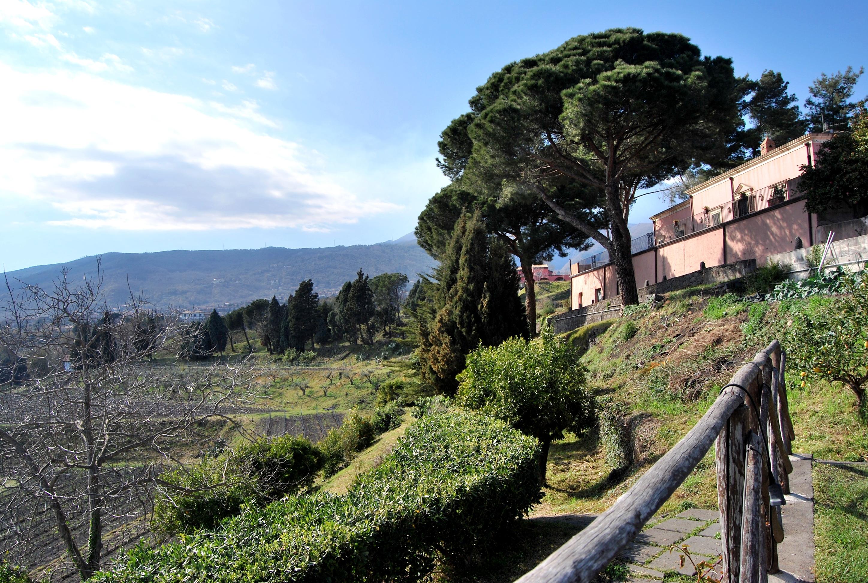 Cantina Murgo. Tenuta San Michele